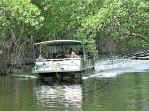 Black River Safari, YS Falls & Appleton Rum Factory Combo Tour Package