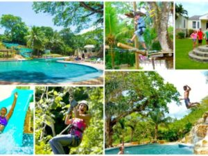 Zipline , ATV & Horseback Riding Chukka Adventure Sandy Bay Jamaica Combo Tour Package