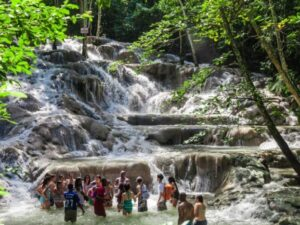 Dunn's River Falls & Luminous Lagoon Combo Tour Package