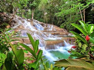 Dunn's River Falls & Dolphin Cove, Ocho Rios, Jamaica